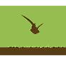 HOLZ Logo